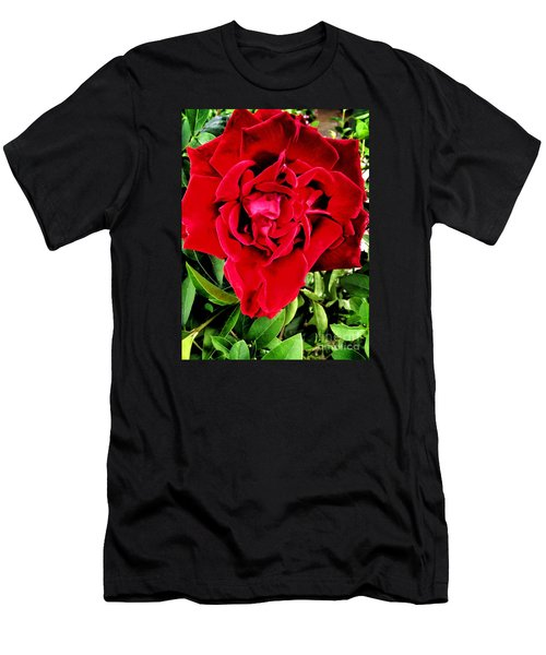 Velvet Red Rose Men's T-Shirt (Athletic Fit)