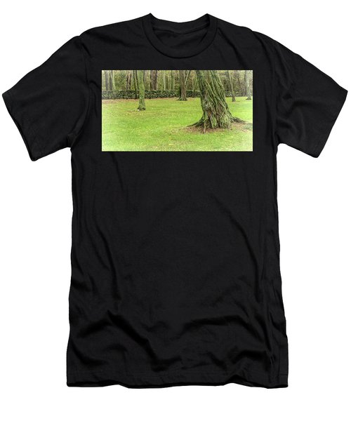 Venerable Trees And A Stone Wall Men's T-Shirt (Athletic Fit)