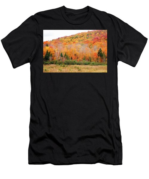 Vermont Foliage Men's T-Shirt (Athletic Fit)
