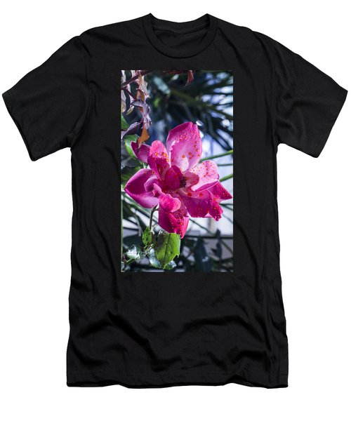 Vibrant Pink Rose Men's T-Shirt (Athletic Fit)