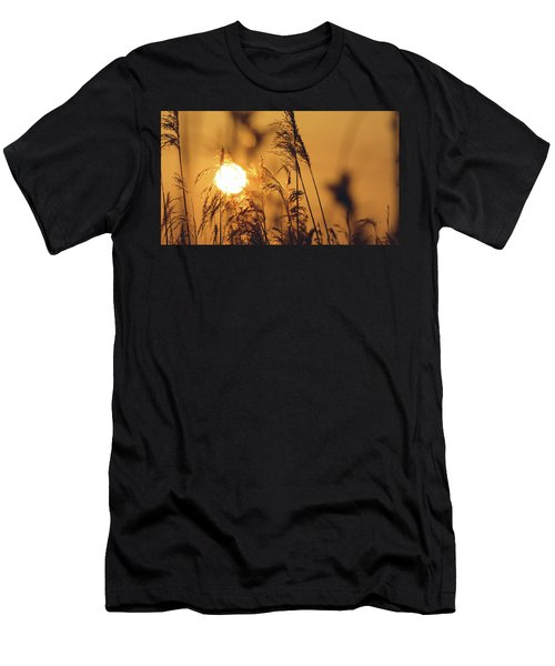 View Of Sun Setting Behind Long Grass C Men's T-Shirt (Athletic Fit)