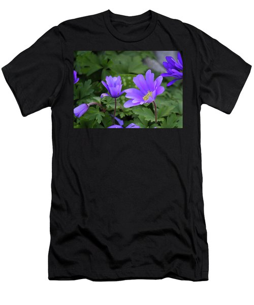Vinca In The Morning Men's T-Shirt (Athletic Fit)