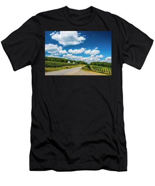 Vineyards In Summer Men's T-Shirt (Athletic Fit)