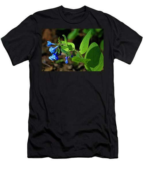 Virginia Bluebells Men's T-Shirt (Athletic Fit)
