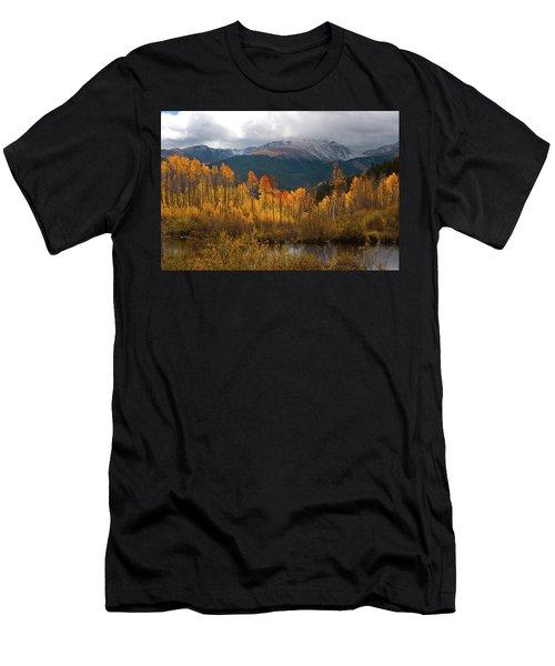 Vivid Autumn Aspen And Mountain Landscape Men's T-Shirt (Athletic Fit)