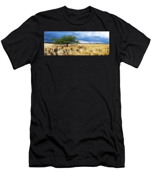Waikoloa Landscape Men's T-Shirt (Athletic Fit)