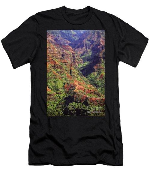 Waimea Canyon Aerial Men's T-Shirt (Athletic Fit)