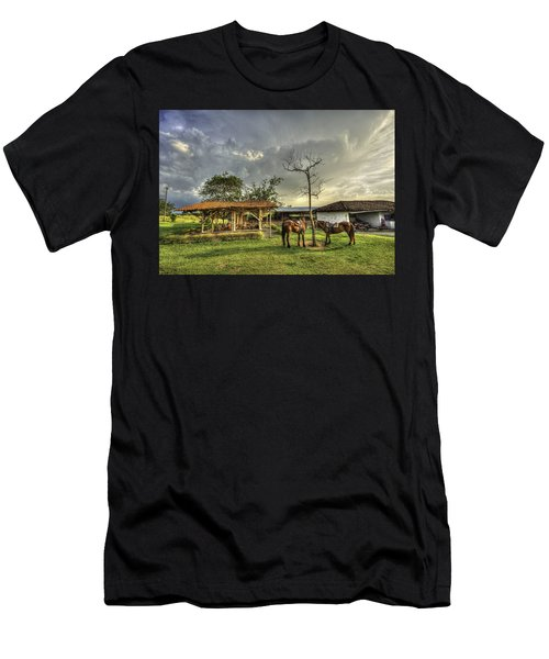 Siesta Men's T-Shirt (Athletic Fit)