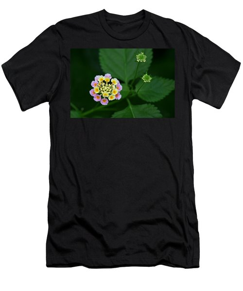 Men's T-Shirt (Slim Fit) featuring the photograph Waiting Their Turn by Shari Jardina