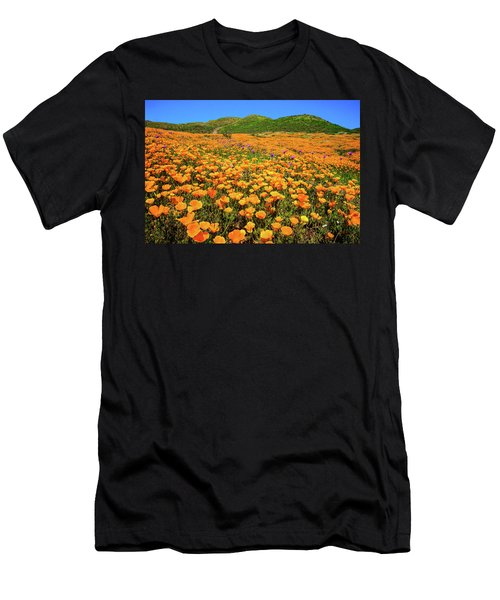 Walker Canyon Wildflowers Men's T-Shirt (Athletic Fit)