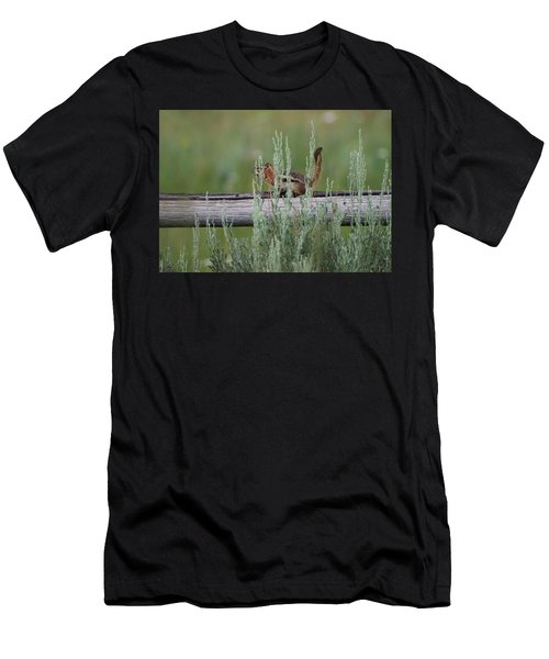 Walking The Line Men's T-Shirt (Athletic Fit)