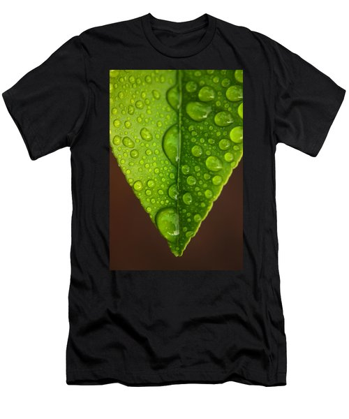 Water Droplets On Lemon Leaf Men's T-Shirt (Athletic Fit)