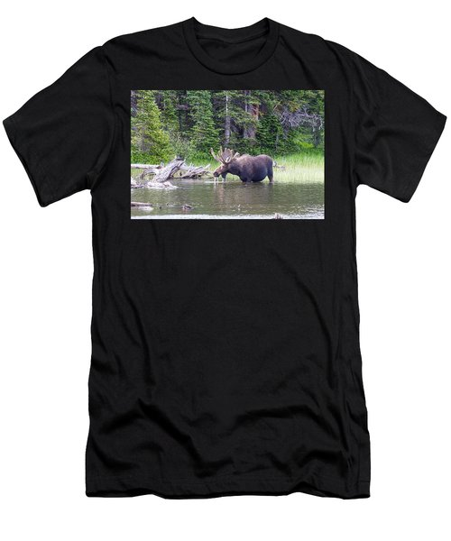 Water Feeding Moose Men's T-Shirt (Athletic Fit)