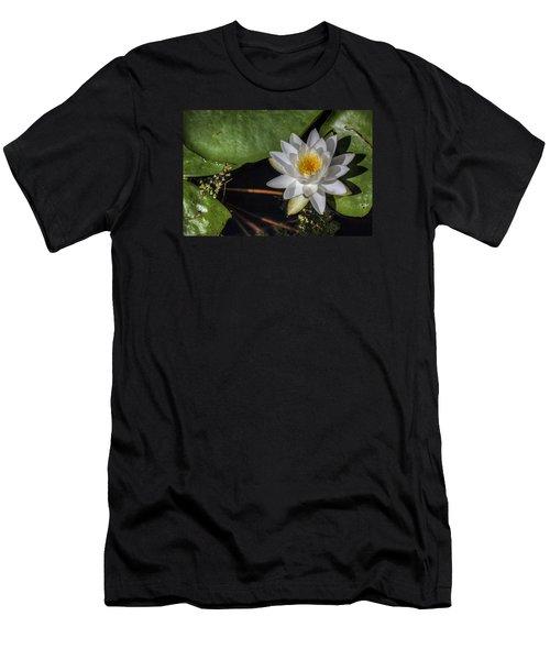 Water Lily Men's T-Shirt (Slim Fit) by Steve Gravano