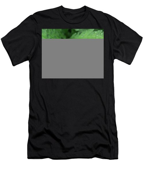 Water On The Fronds Men's T-Shirt (Athletic Fit)