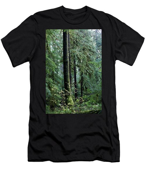 Welcome To The Woods Men's T-Shirt (Slim Fit) by Jane Eleanor Nicholas