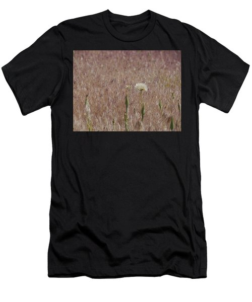 Western Salsify Seed Head Men's T-Shirt (Athletic Fit)