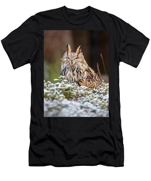 Western Siberian Owl Men's T-Shirt (Athletic Fit)
