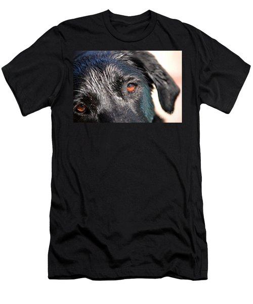 Wet Black Lab Men's T-Shirt (Slim Fit) by Vivian Krug Cotton