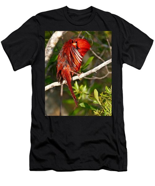 Wet Cardinal Men's T-Shirt (Athletic Fit)