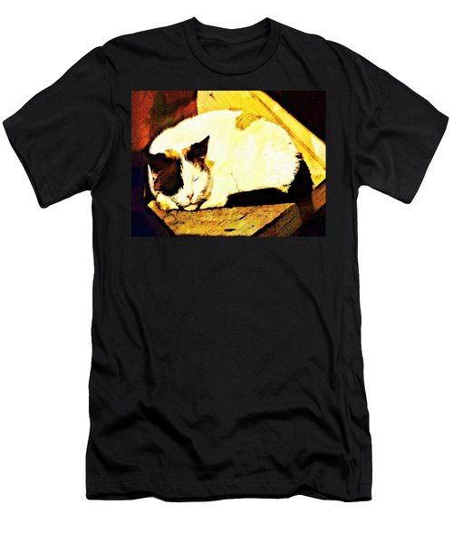 What Do Cats Dream Of Men's T-Shirt (Athletic Fit)