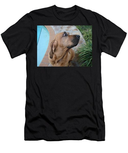 What Was That Men's T-Shirt (Athletic Fit)