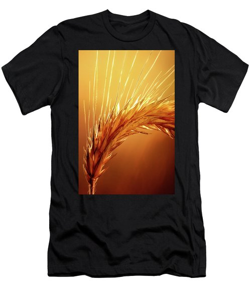 Wheat Close-up Men's T-Shirt (Athletic Fit)