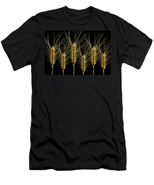 Wheat In A Row Men's T-Shirt (Athletic Fit)