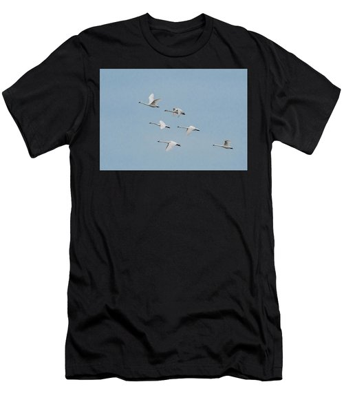 Whistling Swan In Flight Men's T-Shirt (Athletic Fit)
