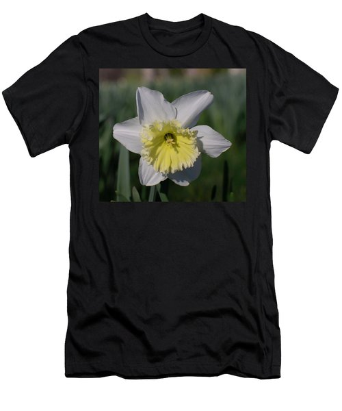 White And Yellow Daffodil Men's T-Shirt (Athletic Fit)