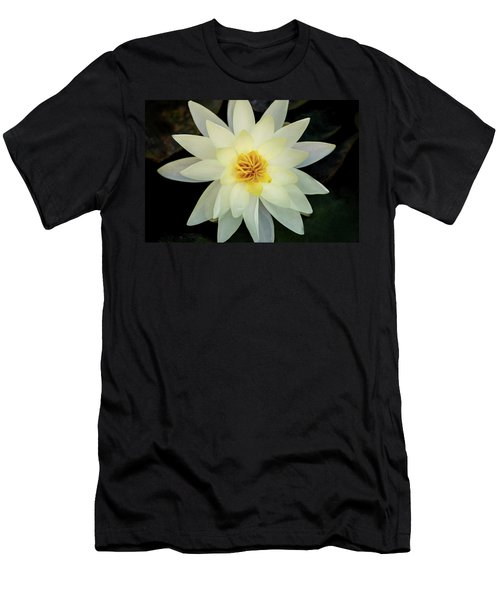 White And Yellow Water Lily Men's T-Shirt (Athletic Fit)