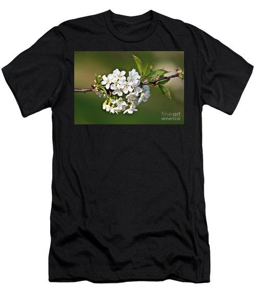 White Apple Blossoms Men's T-Shirt (Athletic Fit)