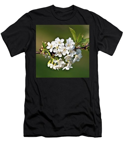 White Apple Blossoms Men's T-Shirt (Athletic Fit)