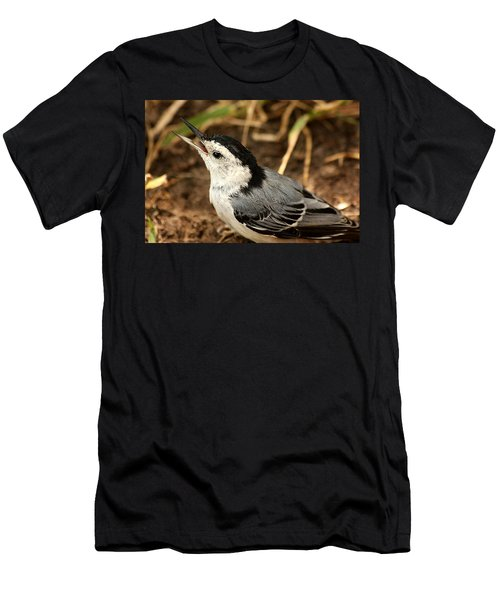 White Breasted Nuthatch 2 Men's T-Shirt (Athletic Fit)