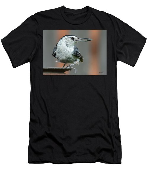 White-breasted Nuthatch With Sunflower Seed Men's T-Shirt (Athletic Fit)