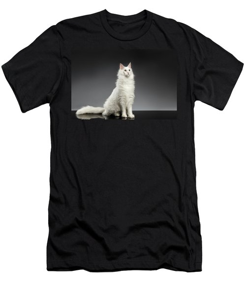 White Huge Maine Coon Cat On Gray Background Men's T-Shirt (Athletic Fit)