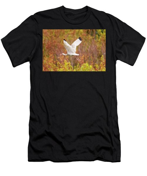 White Ibis In Hilton Head Island Men's T-Shirt (Athletic Fit)