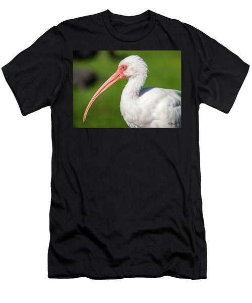 White Ibis Men's T-Shirt (Athletic Fit)