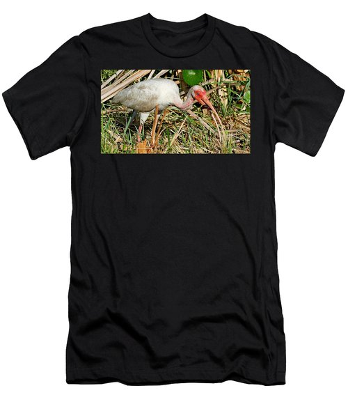 White Ibis With Crayfish Men's T-Shirt (Athletic Fit)