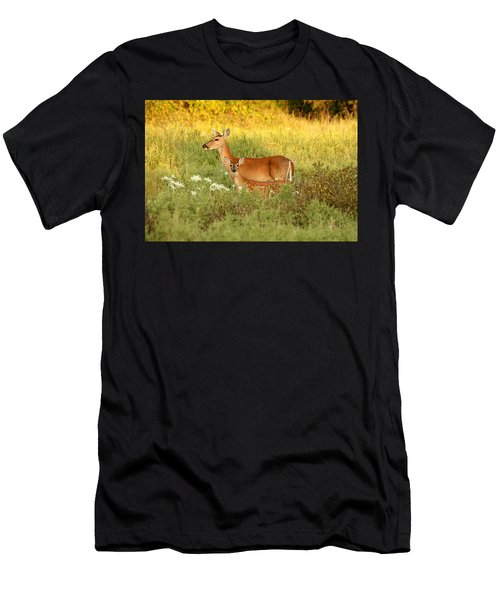 White-tail Doe And Fawn In Meadow Men's T-Shirt (Athletic Fit)