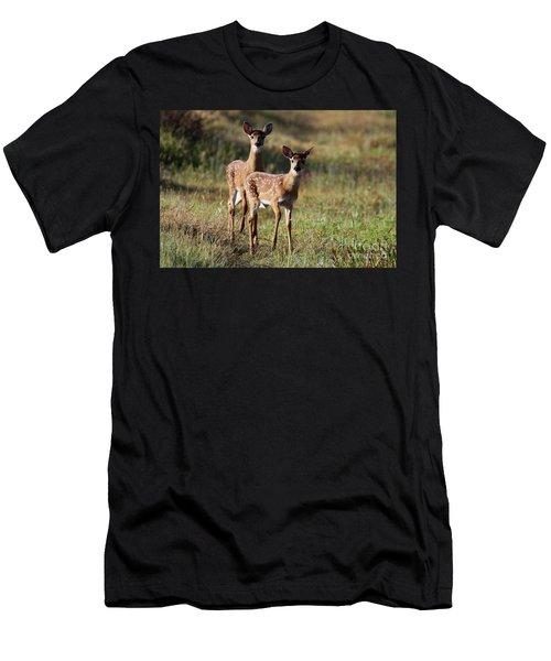 White-tailed Deer Men's T-Shirt (Athletic Fit)