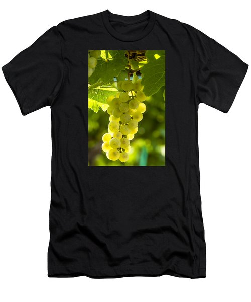 White Wine Grapes Lit By The Sun Men's T-Shirt (Athletic Fit)
