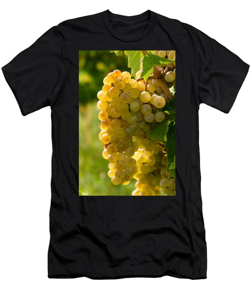 White Wine Grapes Men's T-Shirt (Athletic Fit)