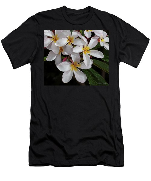 White/yellow Plumerias In Bloom Men's T-Shirt (Athletic Fit)