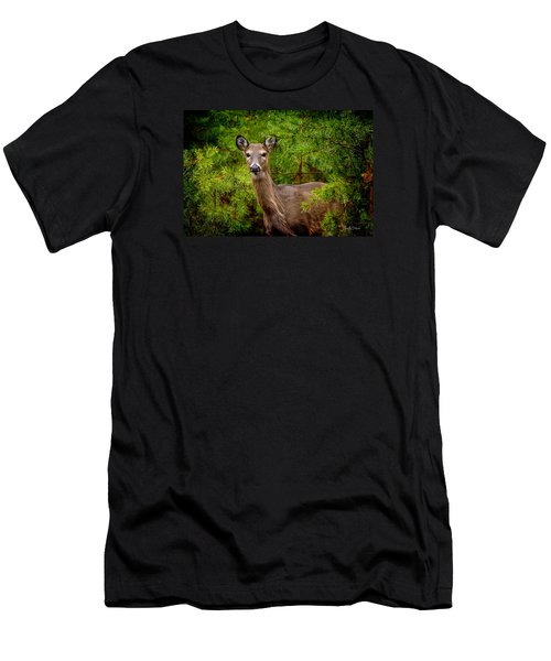Whitetail In The Pines Men's T-Shirt (Athletic Fit)