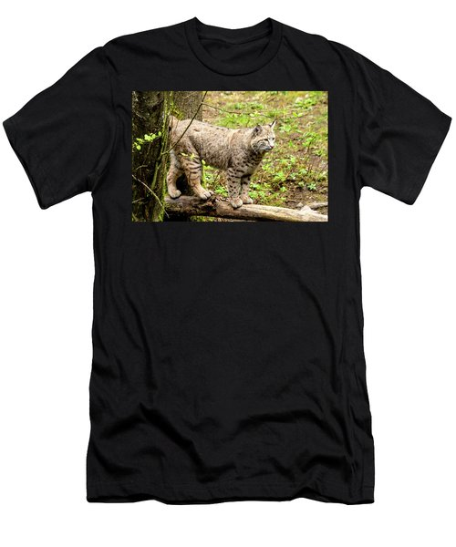 Wild Bobcat Men's T-Shirt (Athletic Fit)