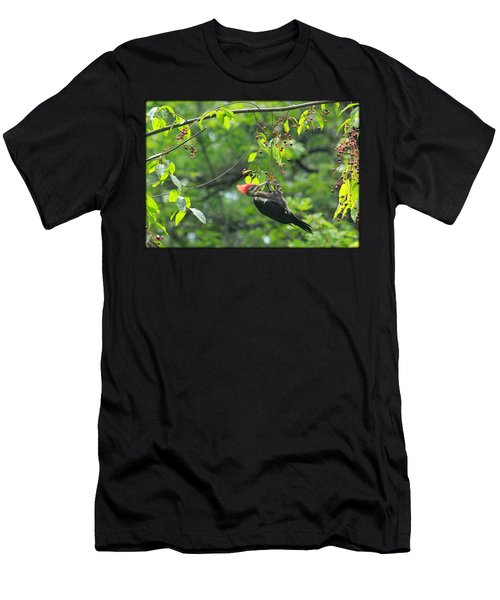 Wild Cherry Snack Men's T-Shirt (Athletic Fit)