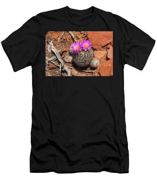Wild Eyed Cactus Men's T-Shirt (Athletic Fit)