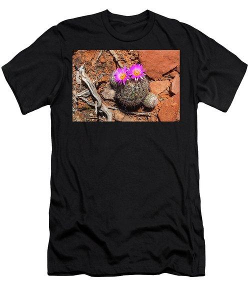 Wild Eyed Cactus Men's T-Shirt (Athletic Fit)