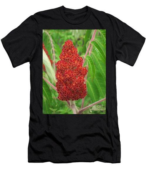 Wild Flowers 11 Men's T-Shirt (Athletic Fit)